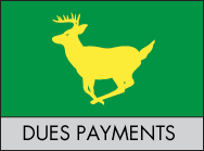 dues-payments